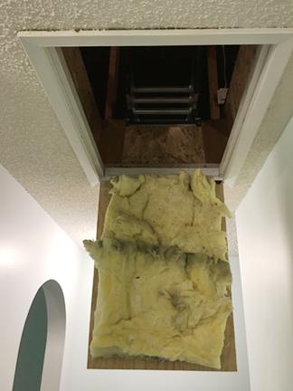 custom-slide-down-ladder